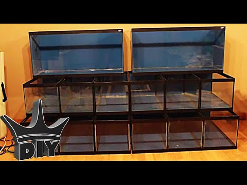 HOW TO: Build A Multiple Aquarium Rack