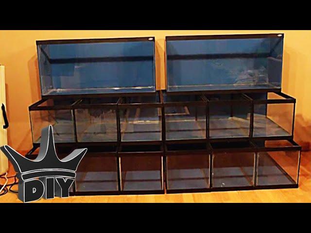 how to build a multiple aquarium rack