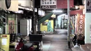 【PV】青春の影 / Paranel〜少年の歌 / Momose (チューリップcover)