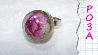 РОЗА В ЭПОКСИДНОЙ СМОЛЕ / Rose in epoxy resin(В этом видео покажу как сохранить надолго красивую маленькую розочку, все это возможно сделать с помощью..., 2014-02-03T06:47:19.000Z)