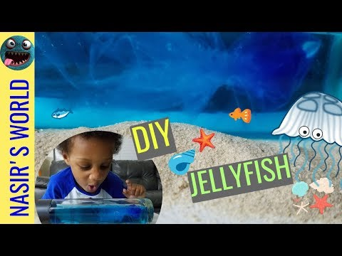 DIY Jellyfish in a Bottle | Homeschool Science Experiments | How to | Kids Activities