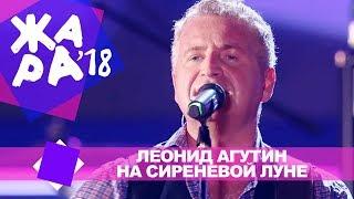Скачать Леонид Агутин На сиреневой Луне ЖАРА В БАКУ Live 2018
