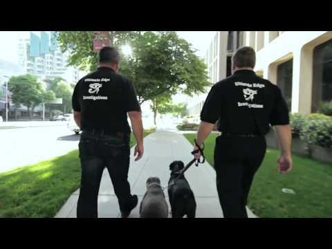 Private Investigator Sacramento | (916)-802-0106 | Private Detective Sacramento