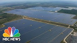 Solar City: Dawn of Solar in the Sunshine State (Part 1)   NBC Nightly News
