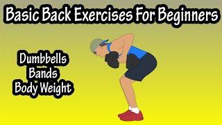 Basic Back Exercises For Beginners - Beginner Back Exercises Workout At Home For Men And For Women