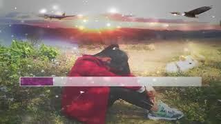 Koj Tso Kuv lawm Los Zoo(Cover-Instrmmental- karaoke.youtube.channel)