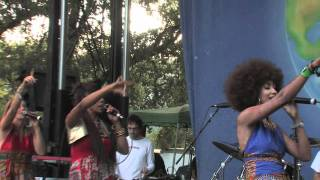Zap Mama Live at Earthdance Festival