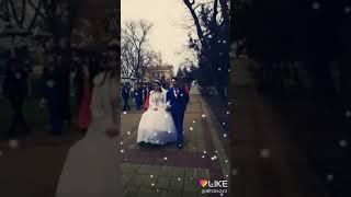 Цыганская свадьба Коля и Малина