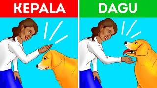 Download Cara Mendekati Anjing dengan Benar dan Aman