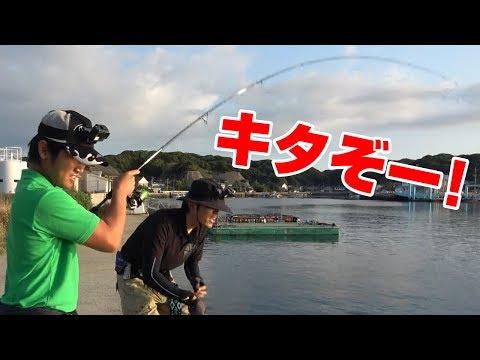 【堤防から】初心者でも簡単に釣れるおいしい魚‼