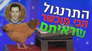 המרושתים: brainDamage מציג תרנגולת מנגנת על פסנתר!
