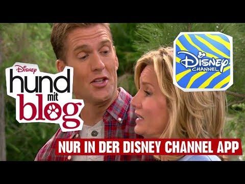 HUND MIT BLOG  : Im Wald  Disney Channel App