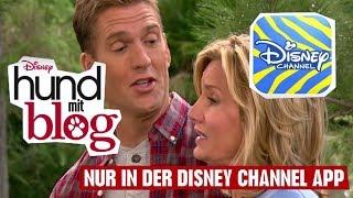 HUND MIT BLOG - Clip: Im Wald | Disney Channel App
