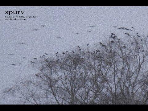 Spurv - Blader som faller til jorden og blir til nye trær [Full Album]