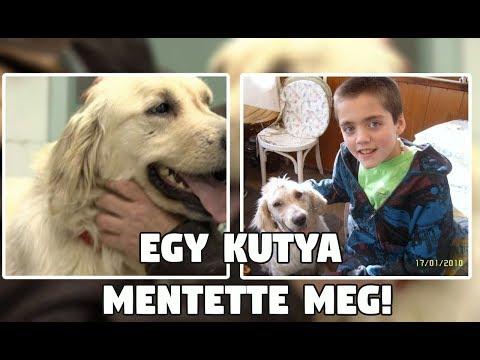 Magyar Top 5