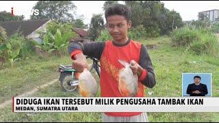 Download lagu Banjir Surut, Warga Medan Ramai-ramai Mancing Ikan di Sungai Deli - iNews Siang 11/12