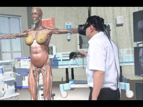VR virtual human body information system