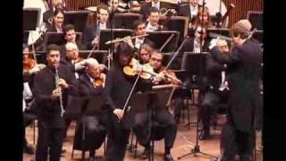 Max Bruch: Double Concerto for Clarinet & Viola 2 mov.