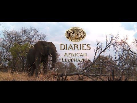 Chander Pahar Diaries | Ep 10 | African...