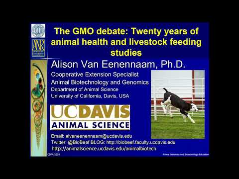 Technical Series Seminar - GMO