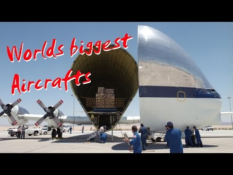 Worlds biggest Aircrafts - Airbus Beluga vs. Boeing Dreamlifter vs. Super Guppy and Antonov