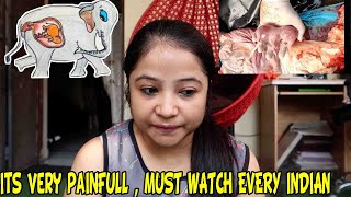 pregnant Elephant Died At Velliyar River Kerla  | How people can be so shameless | Deepti