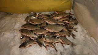 Рыбалка на Финском заливе | Ловля белой рыбы