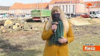 Flesz Gliwice / Wycinka drzew w centrum miasta dobiega końca