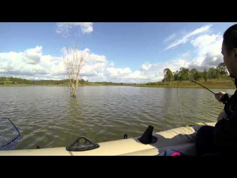 North Pine Dam Lake Samsonvale Queensland HUGE Lungfish Fishing Catch Release  Hero3