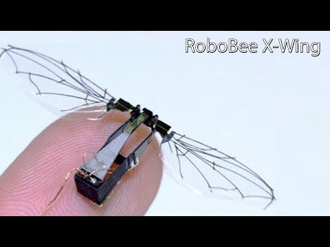 Robobee X-wing Tiny Flying Insect Robot, 4 Wings & Weighs Under A Gram & Fly Using Its Own Power.