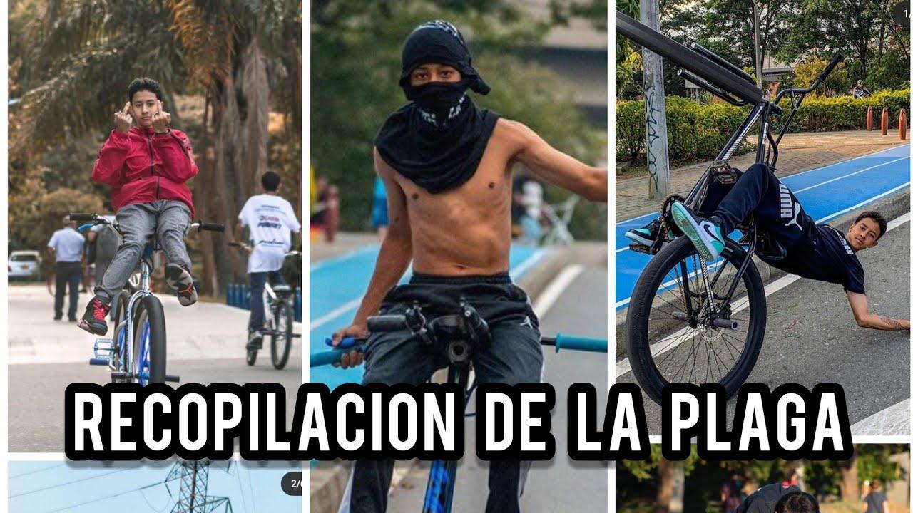 RECOPILACION DE LA PLAGA - JAIDER ARROYO