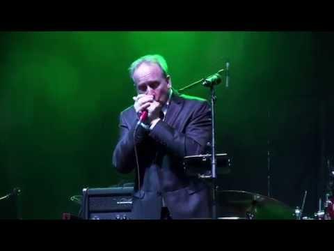 Roly Platt - Georgia - Live at Southside Shuffle Port Credit 2015