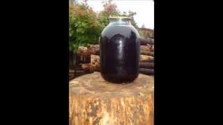 видео Аджика из черноплодной рябины