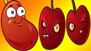Plants Vs. Zombies 2 - Chili Bean & Cherry Bomb Pinata!