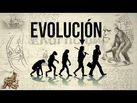 5 HECHOS | EVOLUCIÓN