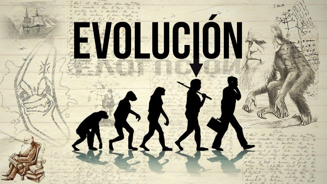 Resultado de imagen de EVOLUCION