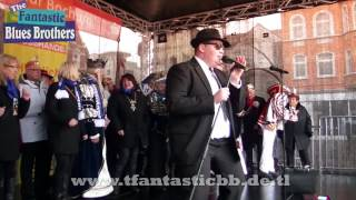 The Fantastic Blues Brothers - Everybody needs Somebody - LIVE