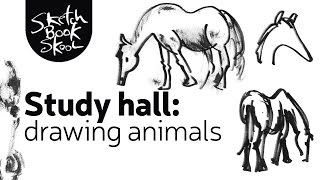 Study Hall: Drawing Animals
