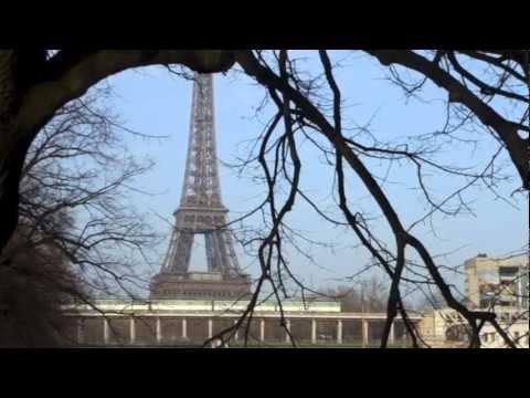 Statue Of Liberty at Paris