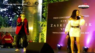 Download lagu Live Perform Zaskia Gotik - Paijo (feat. RPH & DJ Donall)