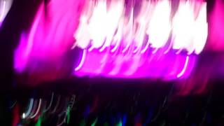 Pitbull - I Just Wanna Feel This Moment - live - Hollywood Bowl - 10/22/16