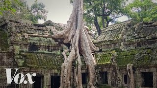 Ta Prohm's haunting ruins are also a 1,000-year-old climate change warning