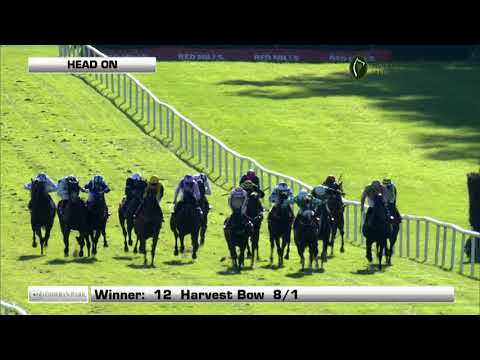 Racing From Gowran Park|15th October 2018
