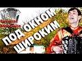 ПОД ОКНОМ ШИРОКИМ под баян поет Вячеслав Абросимов mp3