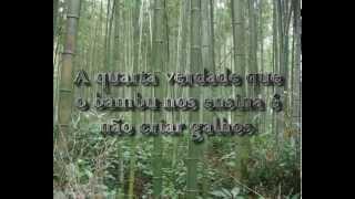 AS SETE VERDADES DO BAMBU