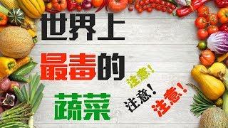 10個世界上最毒的蔬菜 嚴重影響健康!