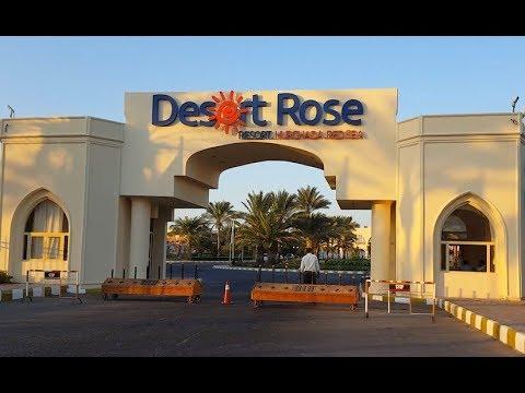 Отель Desert Rose Resort 5*, Хургада, Египет. Плюсы и минусы подробно.