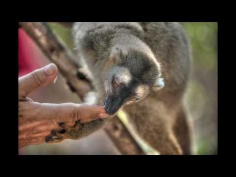 My Madagascar Trip - September 2012