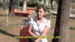 los armadillos elenita video official