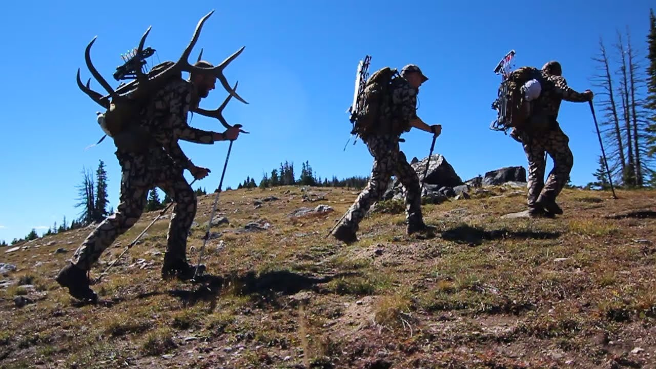 Image result for packing out an elk